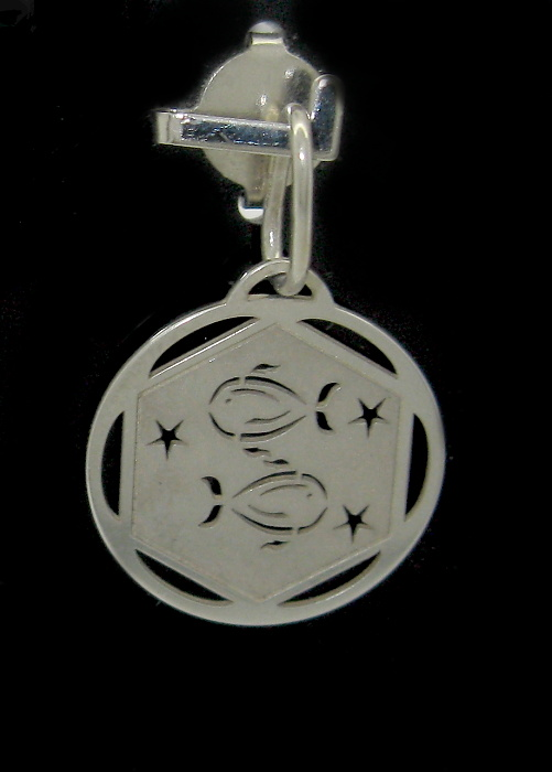 stříbrný přívěsek měsíční znamení RYBY